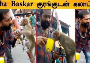 Baba Baskar -க்கு முத்தம் கொடுத்த விளையாடிய குரங்கு,Cook with Comali Finale