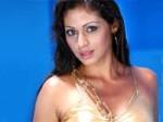 Sadha Regrets Hindi Commitments