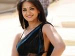 Anushka Dropped Singam Hindi Remake Aid