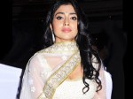 Shriya Aversion On Lavish Birthday Celebration Aid