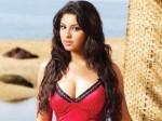 Richa Shift Her Base From Mumbai