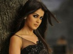 Genelia Wants Comeback