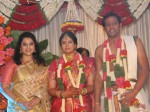Meena Attends Friend Sanghavi S Wedding