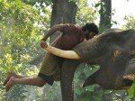 Kumki Sequel Start Very Soon Says Vikram Prabhu