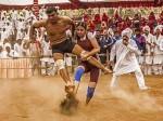 Salman Khan S Sultan Rocks Box Office