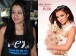 Cinema Industry Turns Against Peta Except Trisha Amy