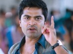 Happybirthdaystr Simbu Turns
