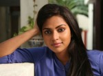 Amala Paul Walks Of Dhanush S Vada Chennai