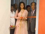 Keerthi Suresh Launches Ap Sridhar S Silicon Statue Museum