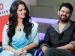 Prabhas Feels Anushka Will Be Perfect Match Him Saaho