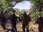 Have You Seen This Jimikki Kammal Dance