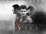 Spyder Readers Review