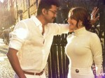 Hc Bans Internet Service Providers Release Mersal Online