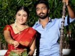 Shalini Pandey Celebrates Pongal
