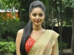 Sanam Shetty The Only Actress Participates Villa Village Show