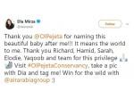 Actress Name Kenyan Baby Rhinoceros