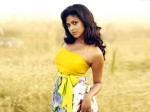 Amala Paul Is Clear About Life