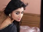 I Am Not At Fit Politics Actress Shriya Saran