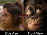 Memes Creators Just Hate Aishwarya