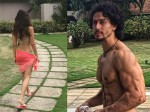 Disha Patani Tiger Shroff Part Ways