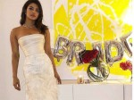 Priyanka Chopra Reveals The Reason Falling Love With Nick