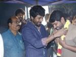 Sivakarthikeyan Produces Movie With Rio Raj As Hero