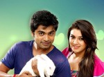 Simbu Says Yes To Hansika