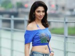 Tamanna S Dream Comes True