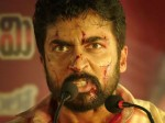 Tamil Rockers Blows Death Knell To Ngk