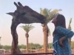 Actress Kajal Aggarwal Playing With Animals In Dubai
