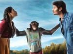 Peta Opposes Jiiva S Gorilla