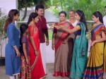 Kanmani Serial This Is What A Pussy Looks Like Shame On Women