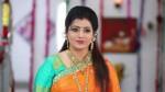 Actress Priya Raman Going To Join In Bjp