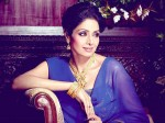 Actress Sridevi S Wax Statue Will Be Installed In Singapore