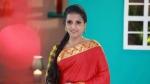 Actress Ammu: அம்முவும், திரிஷாவும்