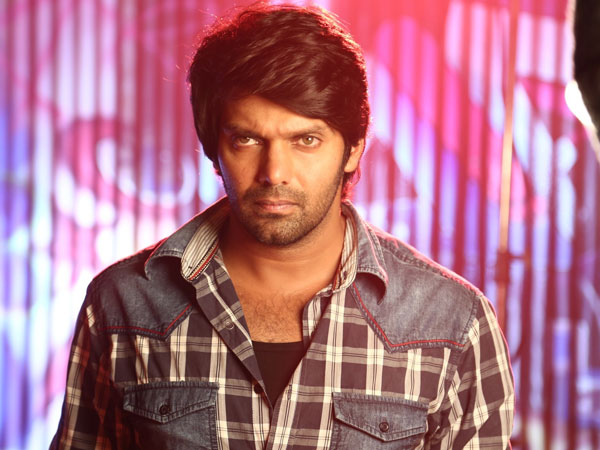 Arya to appear in speaial role in Trisha Illana Nayanthara