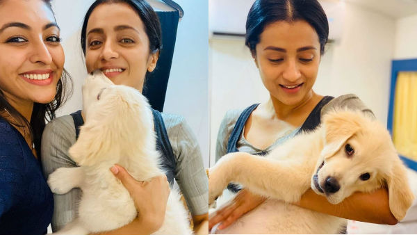 In shooting spot trisha playing with a pet