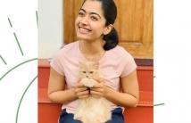 https://tamil.filmibeat.com/img/2020/11/rashmika-cute-cat-1606482084.jpg