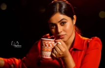 https://tamil.filmibeat.com/img/2021/02/poorna-1612437454.jpg