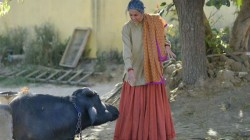 Taapsee Runs Away From A Buffalo In Film Set