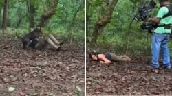 Sunaina Stunts With Pit Bull Dog Video Goes Viral