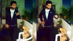 Simbu S Valentein S Day Message With Dog Video Goes Viral