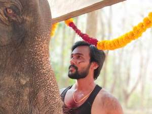 Raja Bheema.. யானை மேல் இருந்து தவறி விழுந்த ஆரவ்.. படப்பிடிப்பில் பரபரப்பு!
