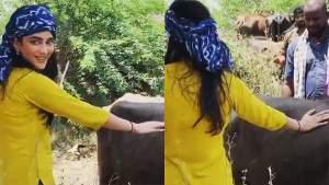 எருமையை தடவி தடவி விளையாடும் ஸ்ருதி ஹாசன்.. வைரலாகும் ஷூட்டிங் ஸ்பாட் வீடியோ!